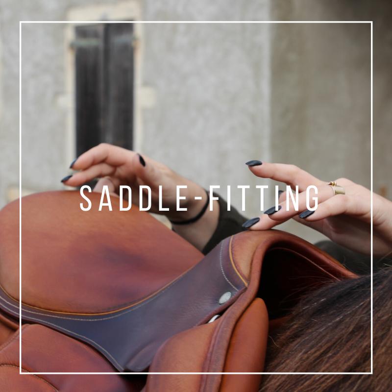 Saddle-fitter Jeanne Selo - Artisan Sellier Lyon Saint Etienne Bourg en Bresse Genève